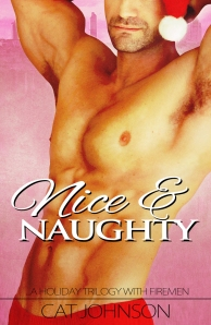 Nice and Naughty a hot holiday trilogy with firemen