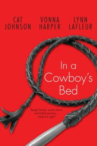 In a Cowboy's Bed