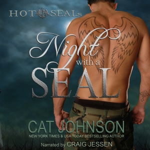 Night With A SEAL Audio