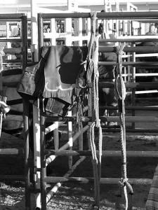 Let's Buck Bull Rider Vest & Chaps