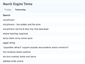 Blog Search Terms