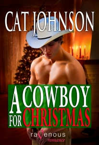 A Cowboy for Christmas by Cat Johnson