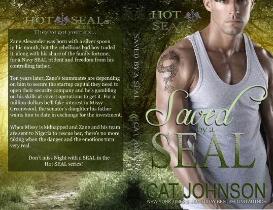 Hot SEALs 2 Print