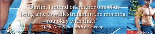 TUCK Quote One Night with a Cowboy