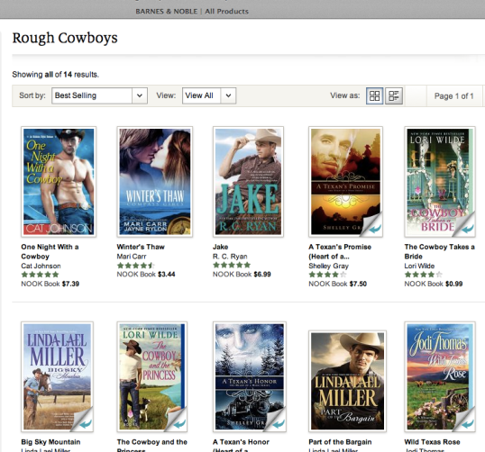 One Night with a Cowboy at Barnes & Noble
