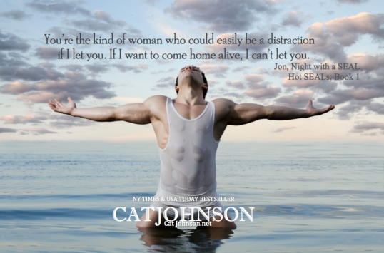 Jon Night With a SEAL Hot SEALs #1 Quote