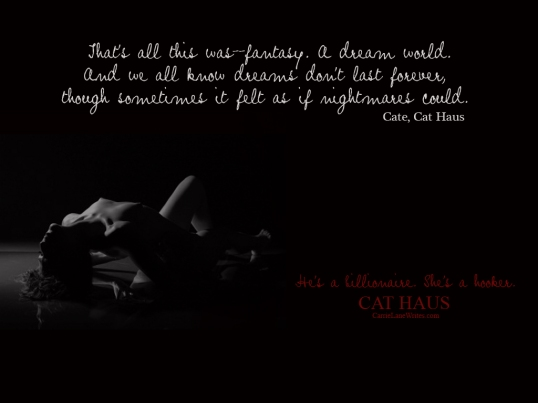 Dreams Quote Cat Haus